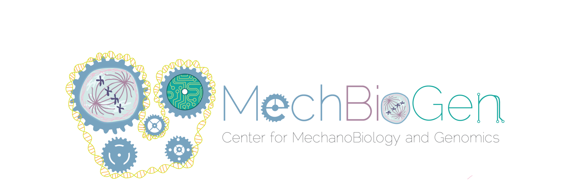 Center for MechanoBiology and Genomics